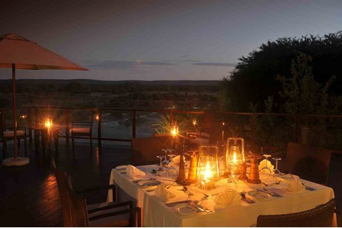 Facts Sheets of Tau Game Lodge | Download Detailed Info South Africa