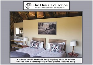 The Duma Collection Wildlife Photography